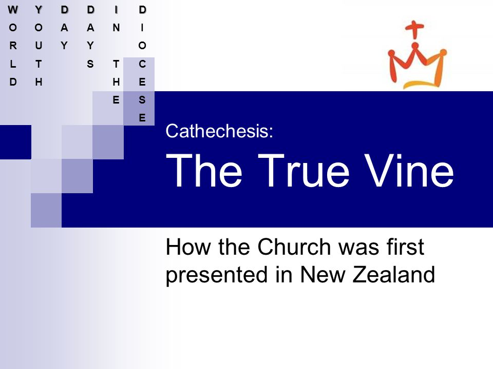 Cathechesis: The True Vine