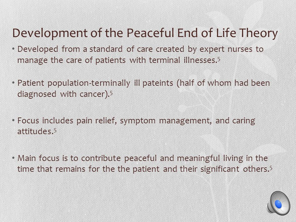Development of the Peaceful End of Life Theory