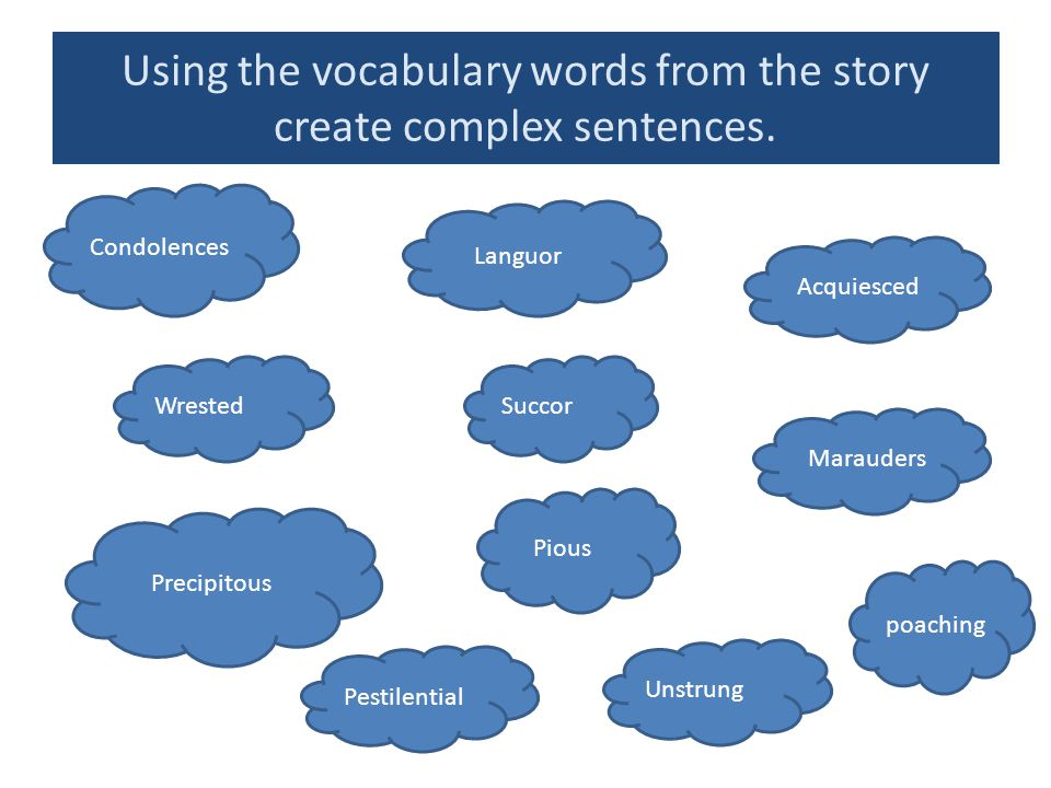 Using the vocabulary words from the story create complex sentences.