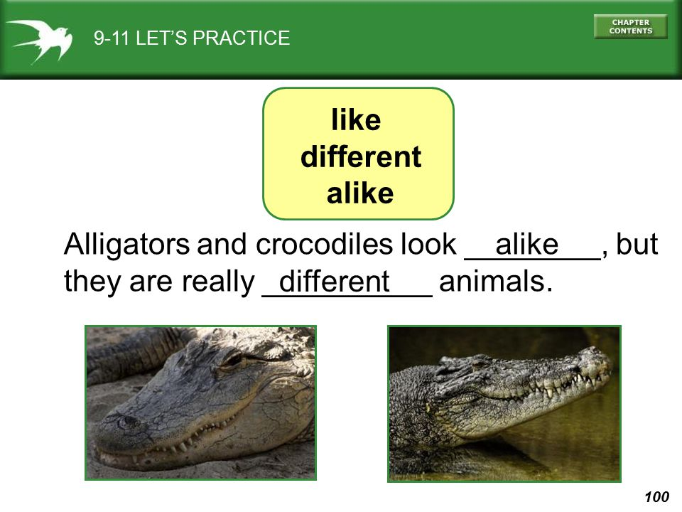 Alligators and crocodiles look ________, but