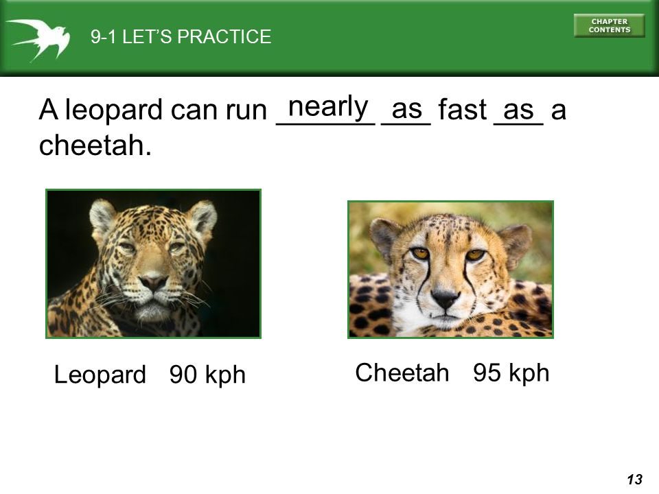 A leopard can run ______ ___ fast ___ a cheetah. nearly as as
