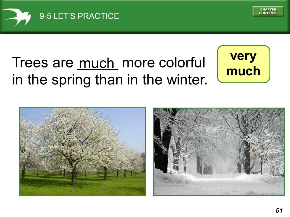 Trees are _____ more colorful in the spring than in the winter. much
