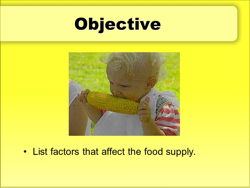 Objective List factors that affect the food supply.