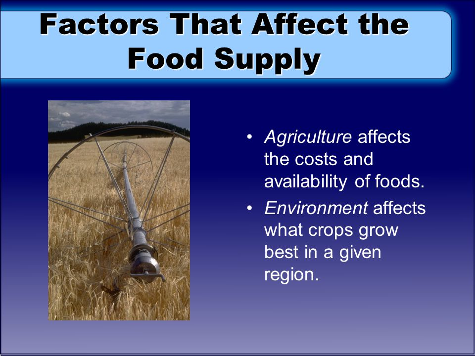 Factors That Affect the Food Supply