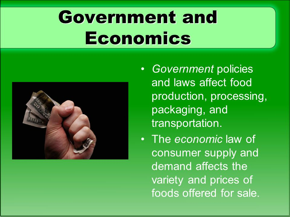Government and Economics