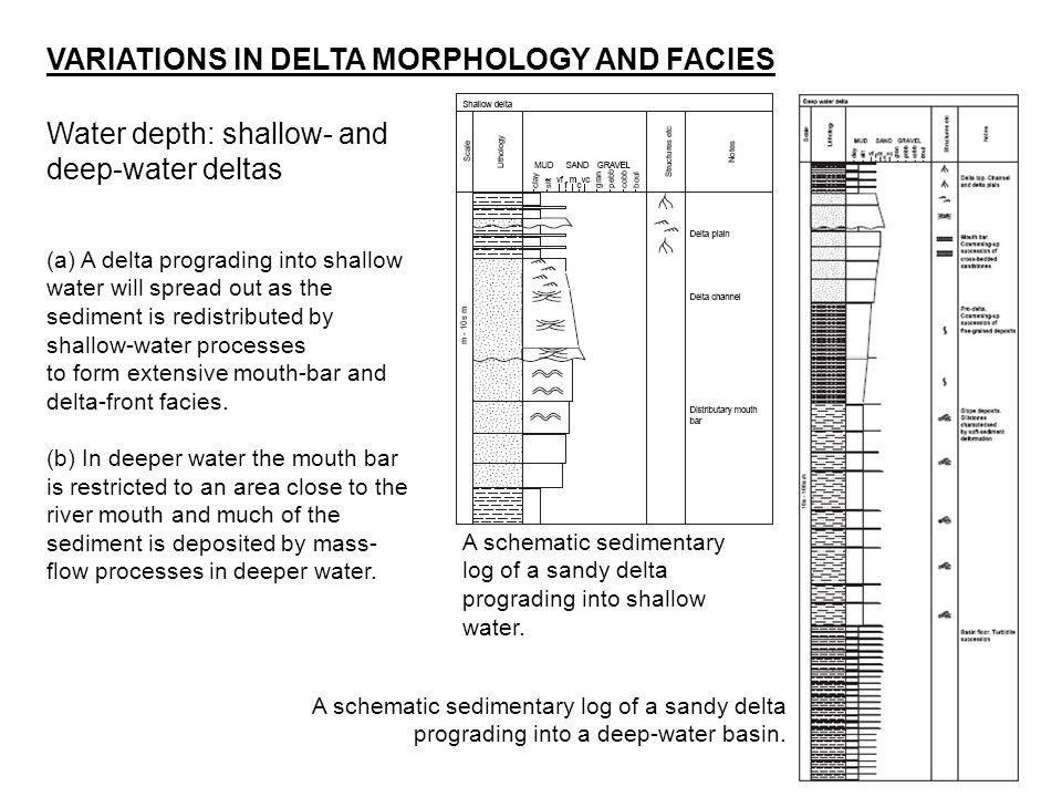 VARIATIONS IN DELTA MORPHOLOGY AND FACIES