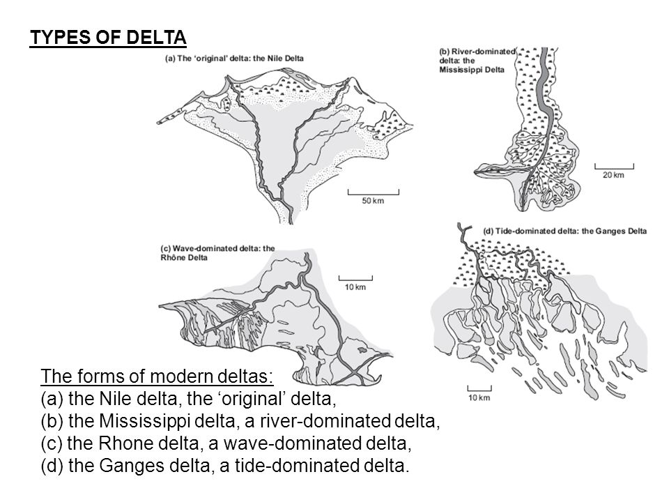 TYPES OF DELTA The forms of modern deltas: (a) the Nile delta, the 'original' delta, (b) the Mississippi delta, a river-dominated delta,