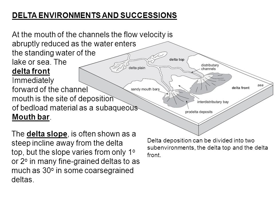 DELTA ENVIRONMENTS AND SUCCESSIONS