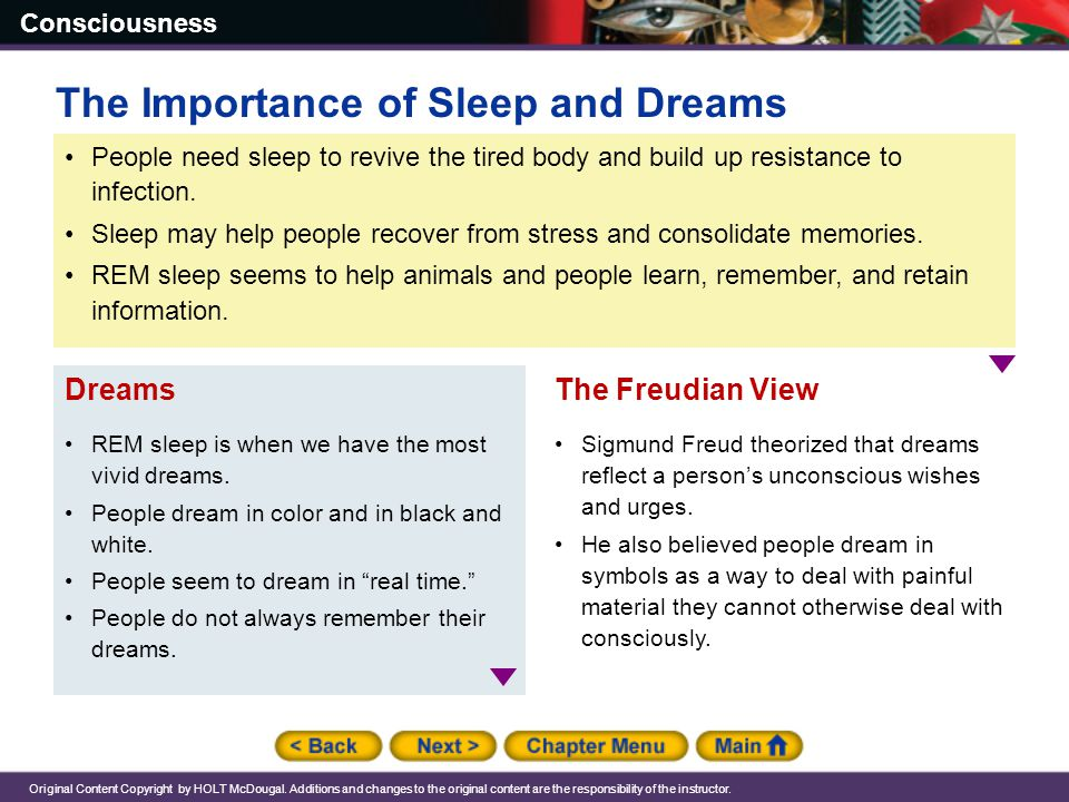The Importance of Sleep and Dreams