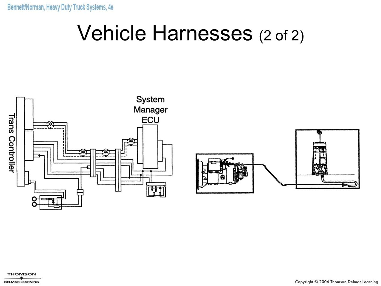 Vehicle Harnesses (2 of 2)