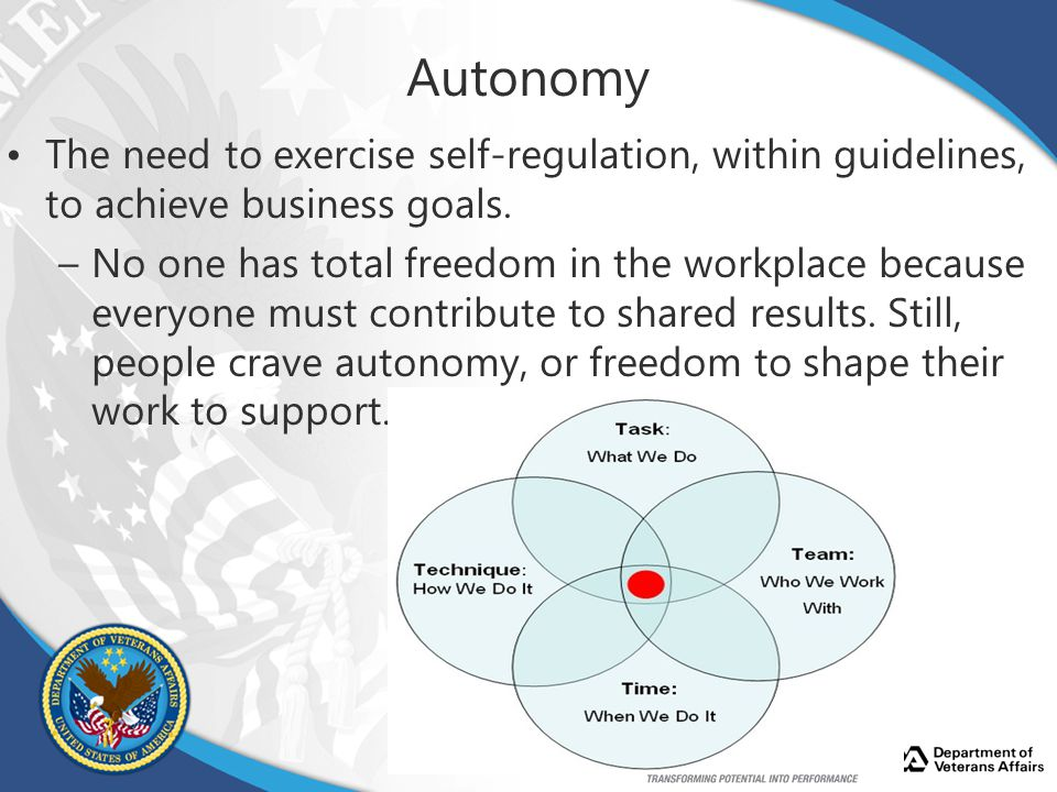 Autonomy The need to exercise self-regulation, within guidelines, to achieve business goals.