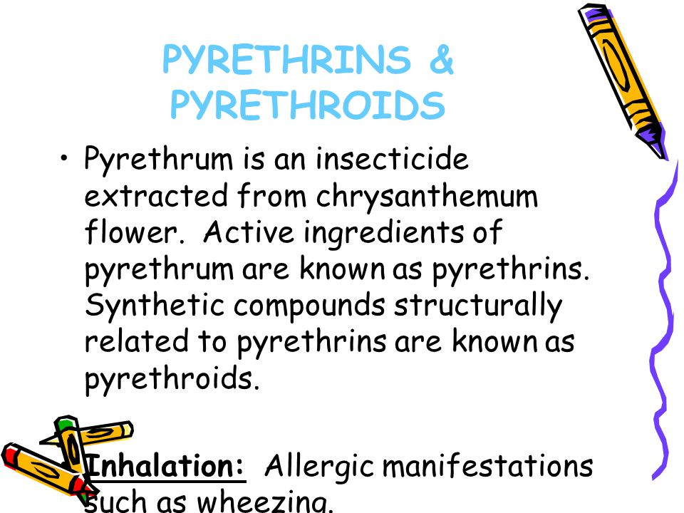 PYRETHRINS & PYRETHROIDS