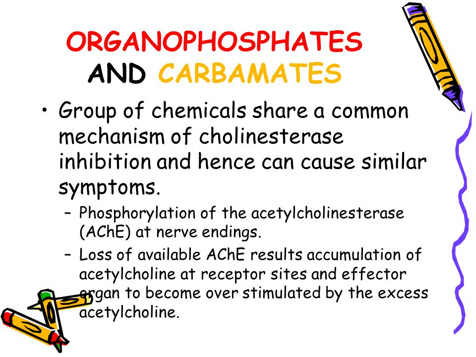 ORGANOPHOSPHATES AND CARBAMATES
