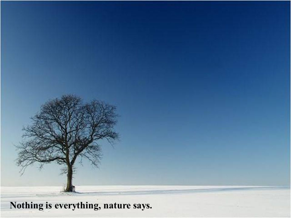 Nothing is everything, nature says.