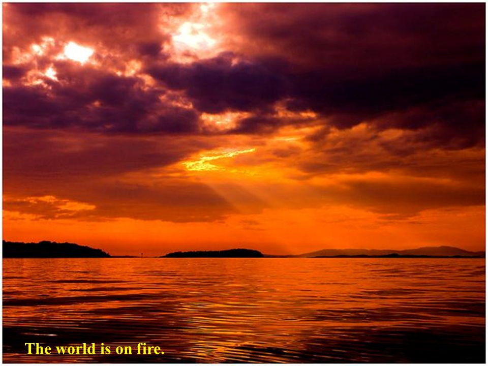 The world is on fire.