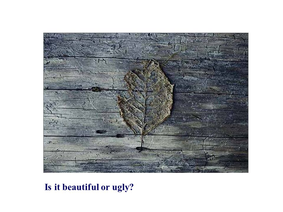 Is it beautiful or ugly