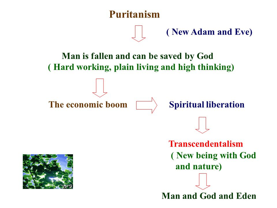 Puritanism ( New Adam and Eve) Man is fallen and can be saved by God