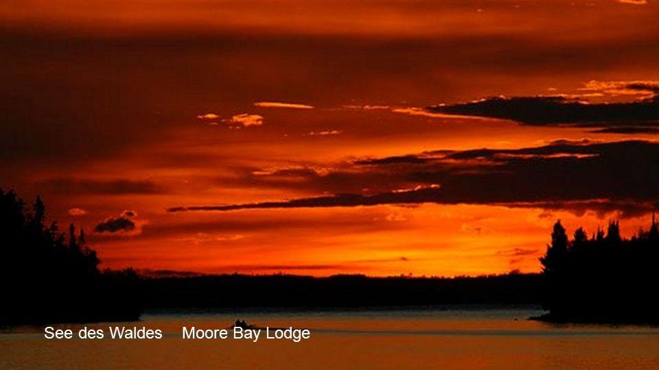 See des Waldes Moore Bay Lodge