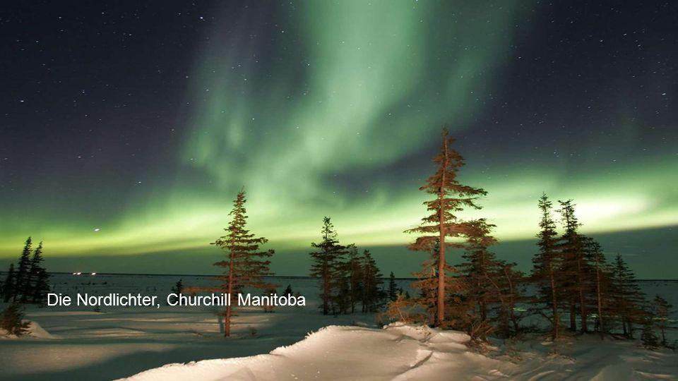 Die Nordlichter, Churchill Manitoba