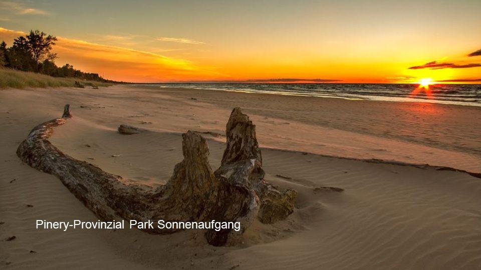 Pinery-Provinzial Park Sonnenaufgang