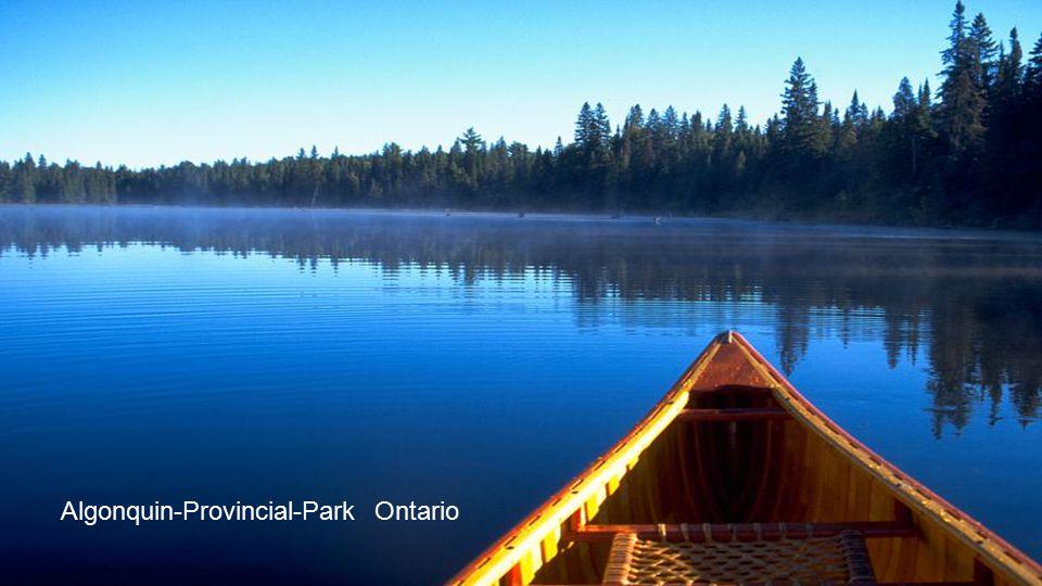 Algonquin-Provincial-Park Ontario