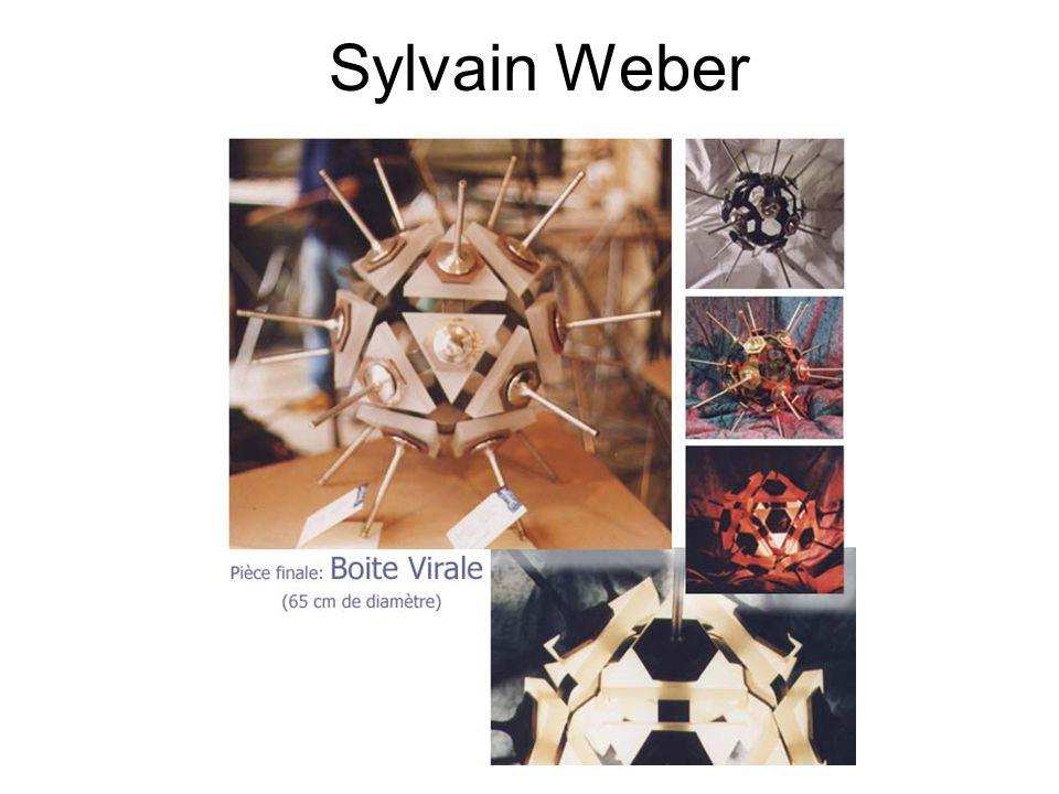 Sylvain Weber