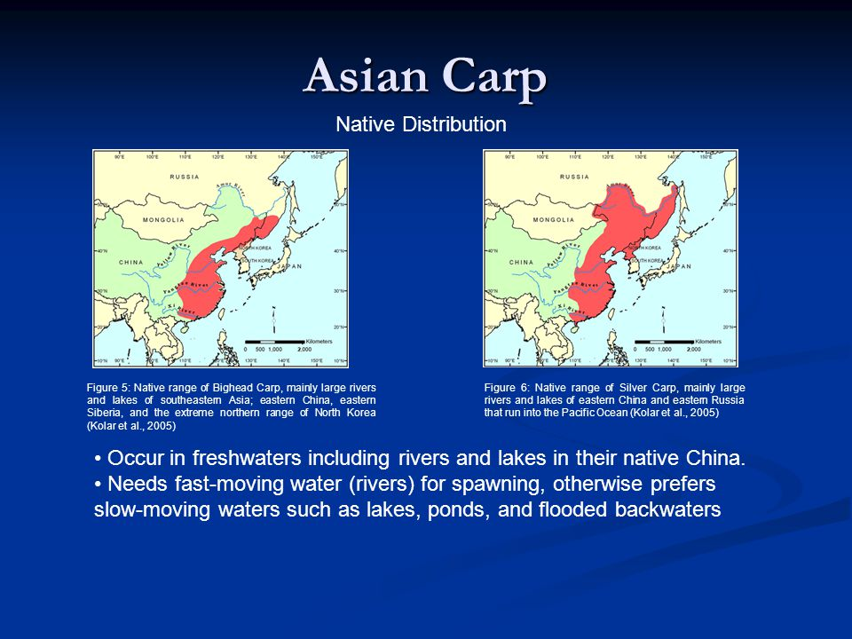 Asian Carp Native Distribution