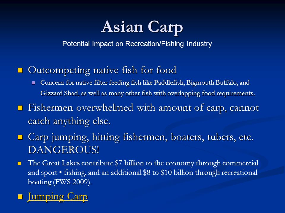 Asian Carp Outcompeting native fish for food
