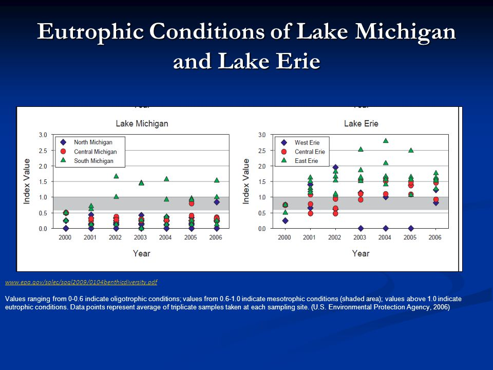 Eutrophic Conditions of Lake Michigan and Lake Erie