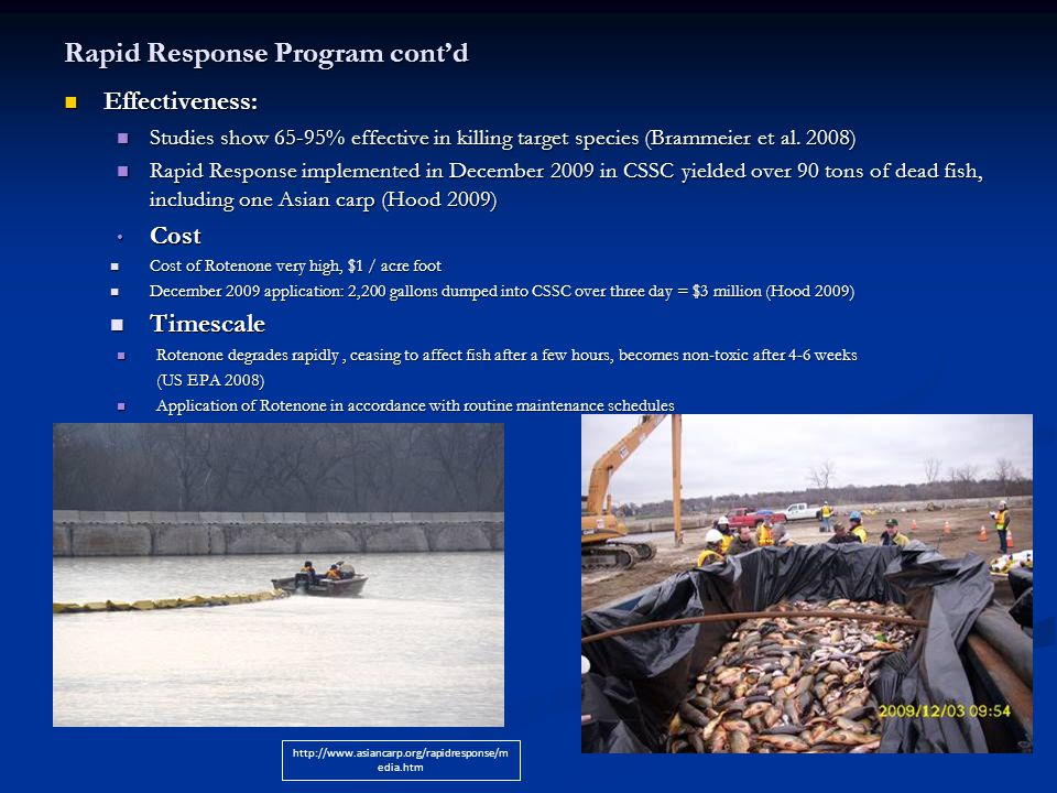 Rapid Response Program cont'd