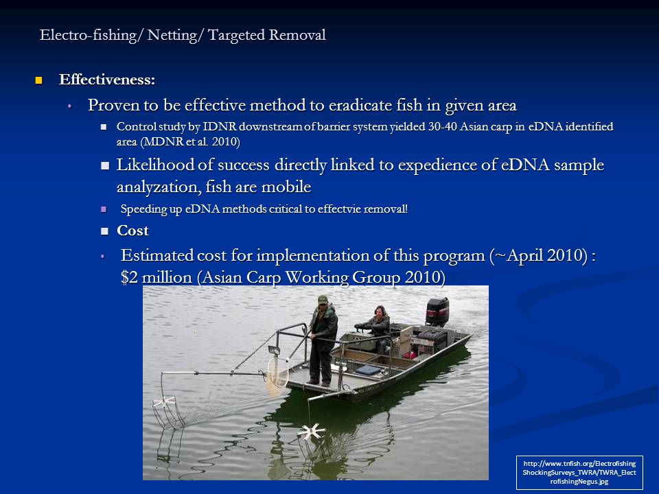 Electro-fishing/ Netting/ Targeted Removal