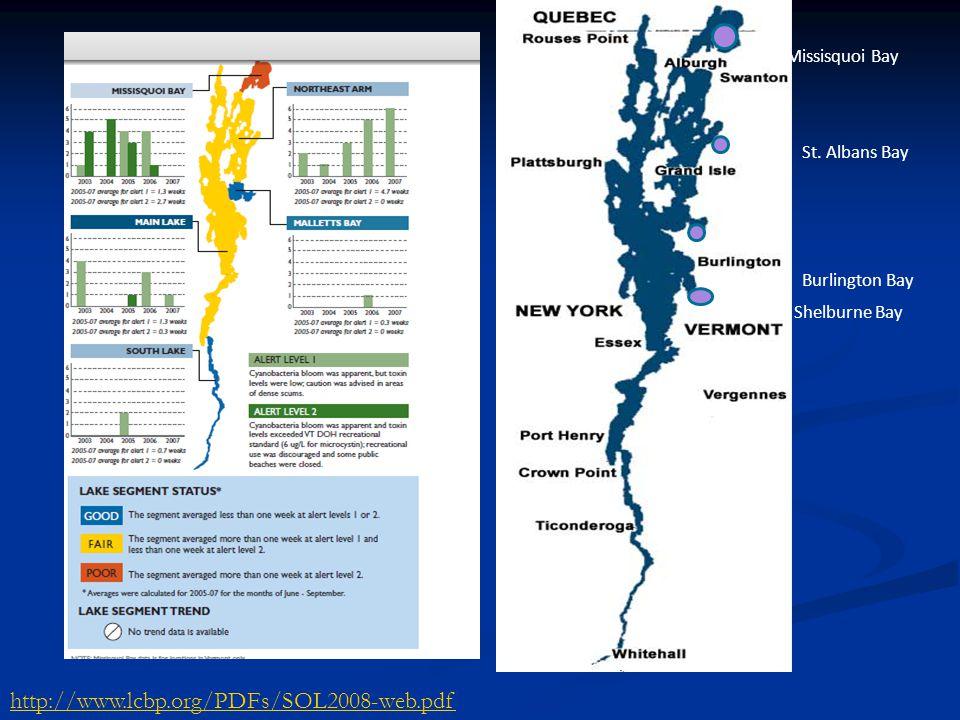 http://www.lcbp.org/PDFs/SOL2008-web.pdf Missisquoi Bay St. Albans Bay