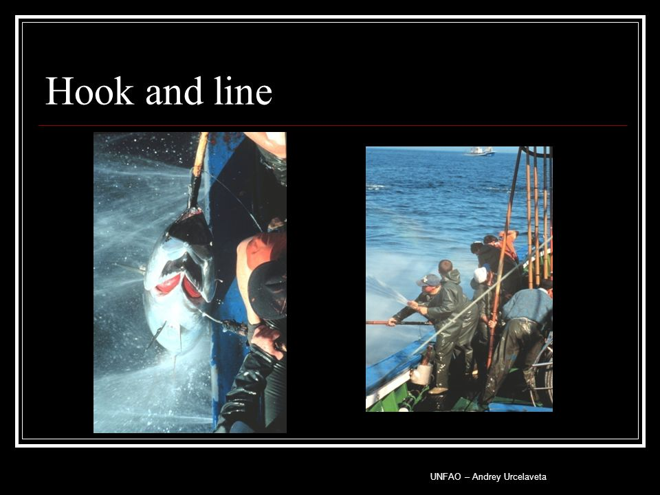 Hook and line