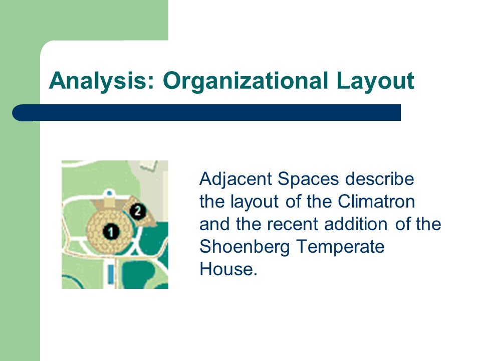 Analysis: Organizational Layout