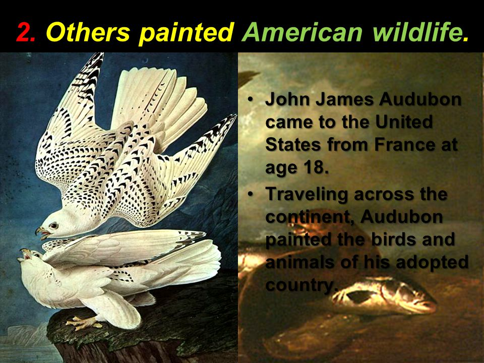 2. Others painted American wildlife.