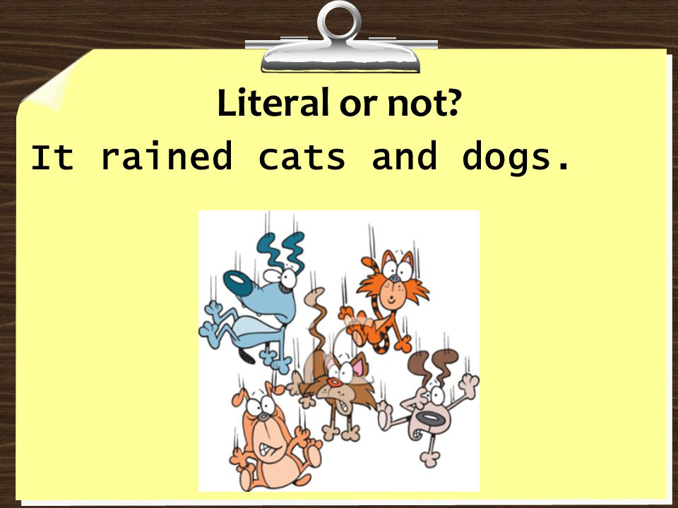 Literal or not It rained cats and dogs.