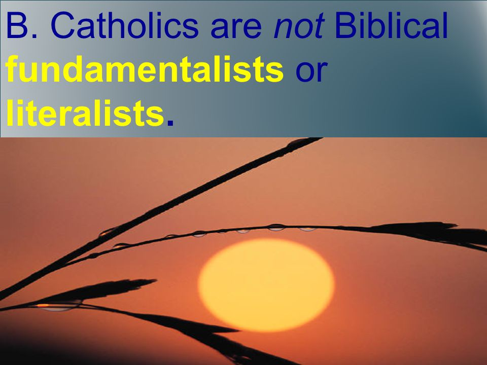 B. Catholics are not Biblical fundamentalists or literalists.