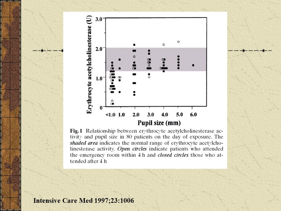 Intensive Care Med 1997;23:1006