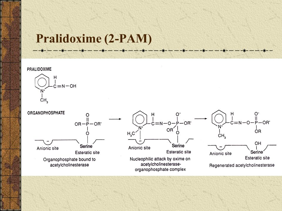 Pralidoxime (2-PAM) Dose: 1-2 gm IV push > 10 min every 2-4 hr.