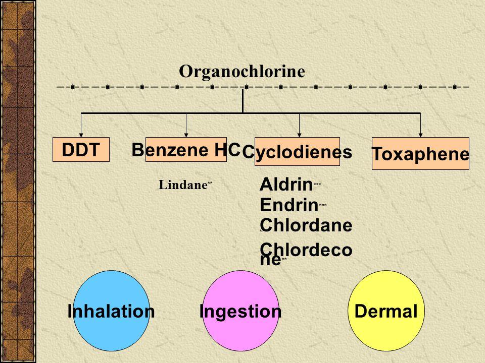 DDT Benzene HC Cyclodienes Toxaphene Inhalation Ingestion Dermal