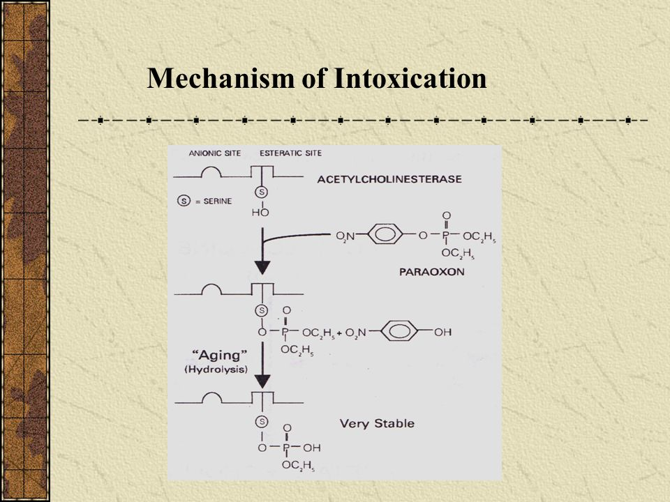 Mechanism of Intoxication