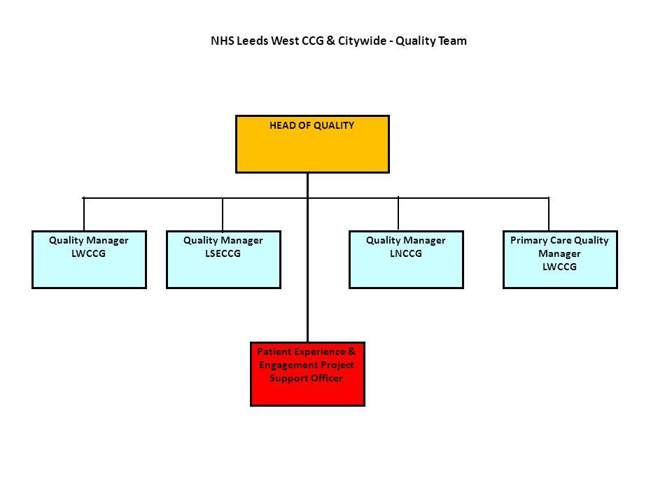 NHS Leeds West CCG & Citywide - Quality Team