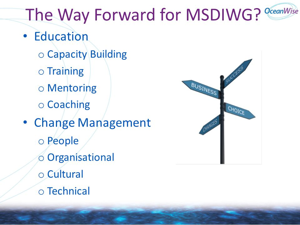 The Way Forward for MSDIWG