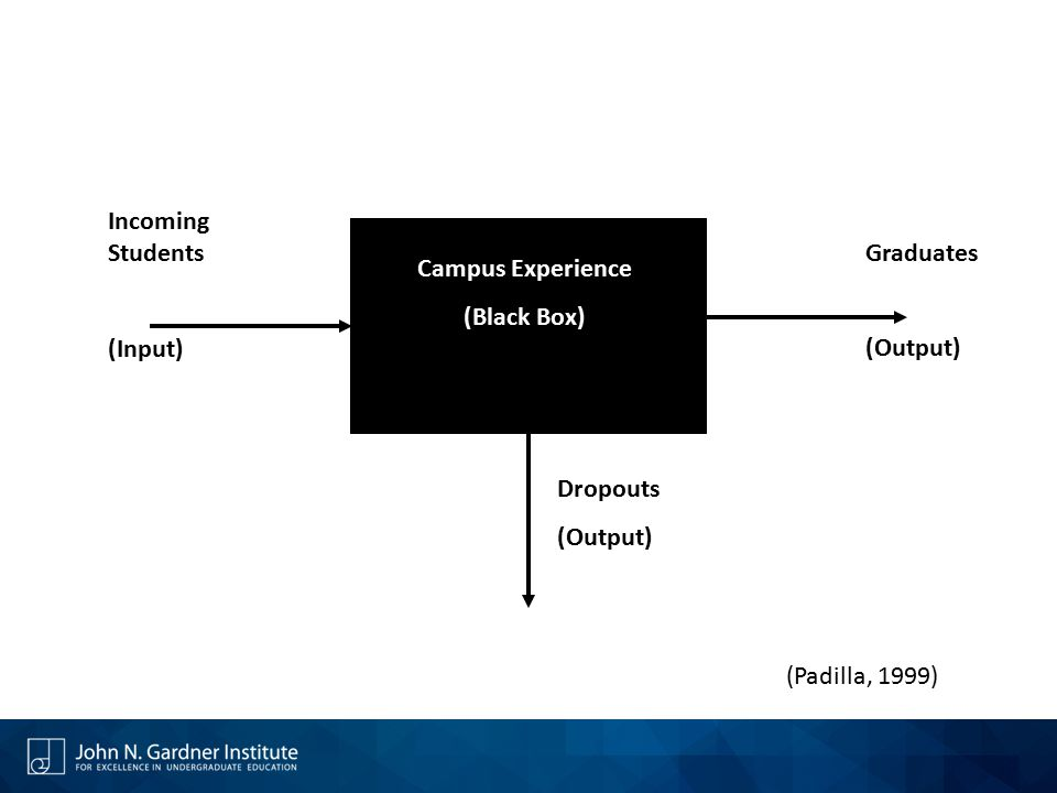 Campus Experience (Black Box) Incoming Students (Input) Graduates (Output) Dropouts (Padilla, 1999)