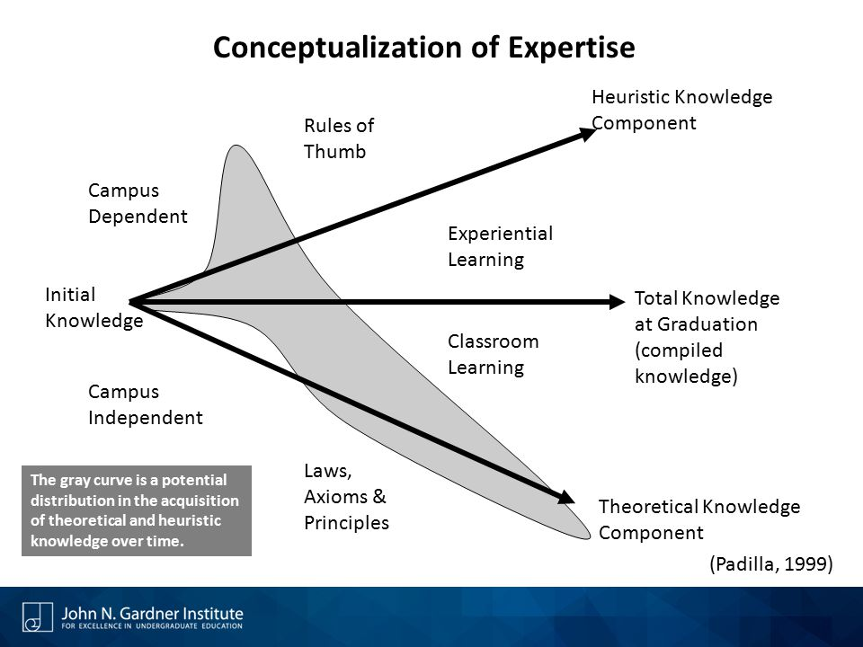 Conceptualization of Expertise