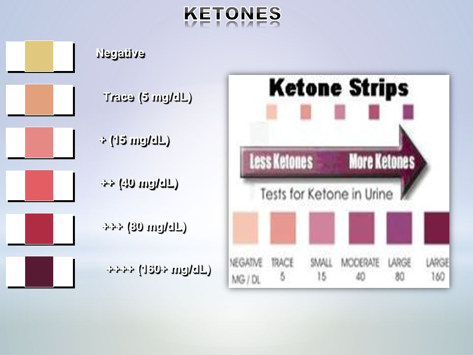 KETONES Negative Trace (5 mg/dL) + (15 mg/dL) ++ (40 mg/dL)