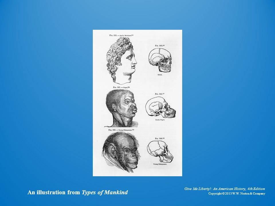 Illustration from Types of Mankind