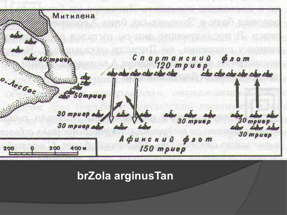 brZola arginusTan