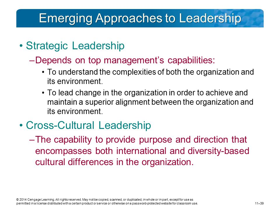 Emerging Approaches to Leadership