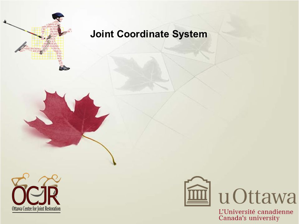 Joint Coordinate System